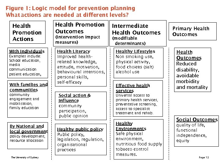 Figure 1: Logic model for prevention planning What actions are needed at different levels?