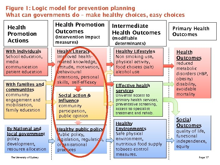 Figure 1: Logic model for prevention planning What can governments do – make healthy