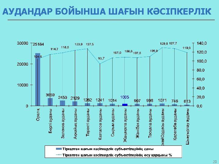 АУДАНДАР БОЙЫНША ШАҒЫН КӘСІПКЕРЛІК 20