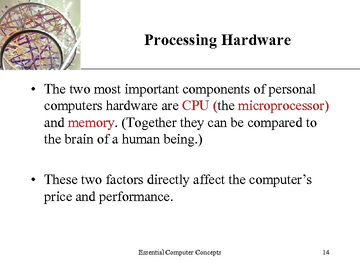 Processing Hardware XP • The two most important components of personal computers hardware CPU