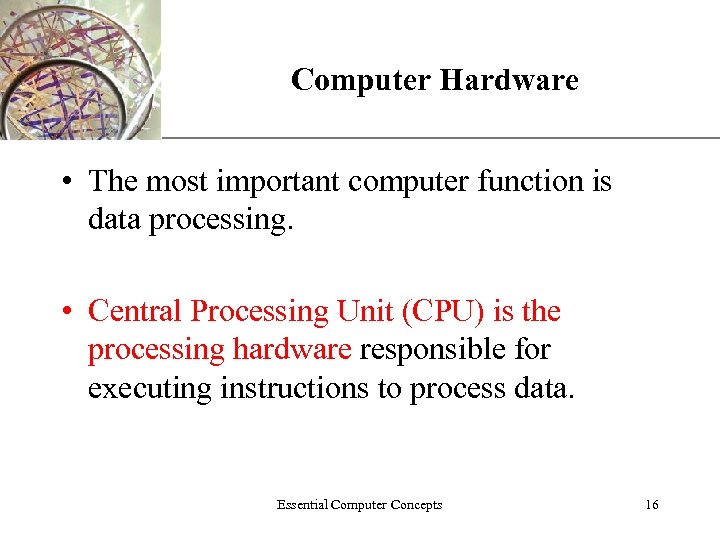 Computer Hardware XP • The most important computer function is data processing. • Central