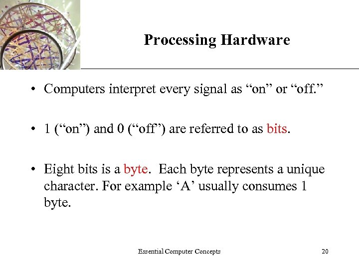 "XP Processing Hardware • Computers interpret every signal as ""on"" or ""off. "" •"