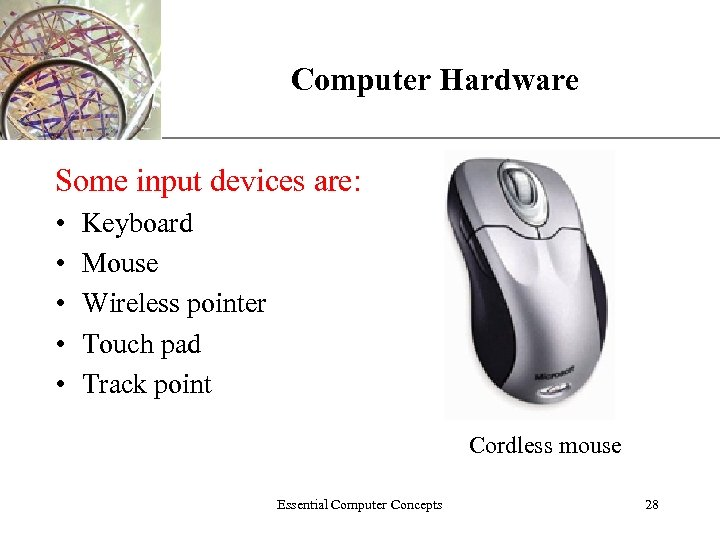 Computer Hardware XP Some input devices are: • • • Keyboard Mouse Wireless pointer