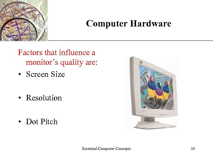 Computer Hardware XP Factors that influence a monitor's quality are: • Screen Size •