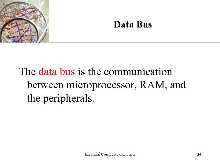 Data Bus XP The data bus is the communication between microprocessor, RAM, and the