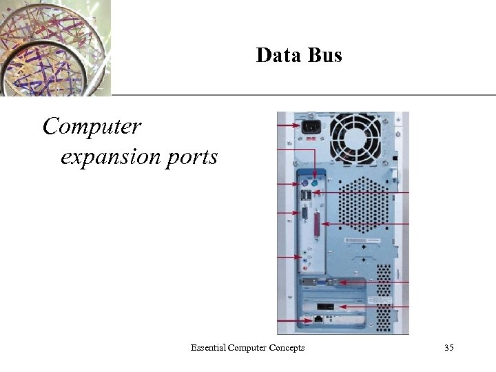 Data Bus XP Computer expansion ports Essential Computer Concepts 35