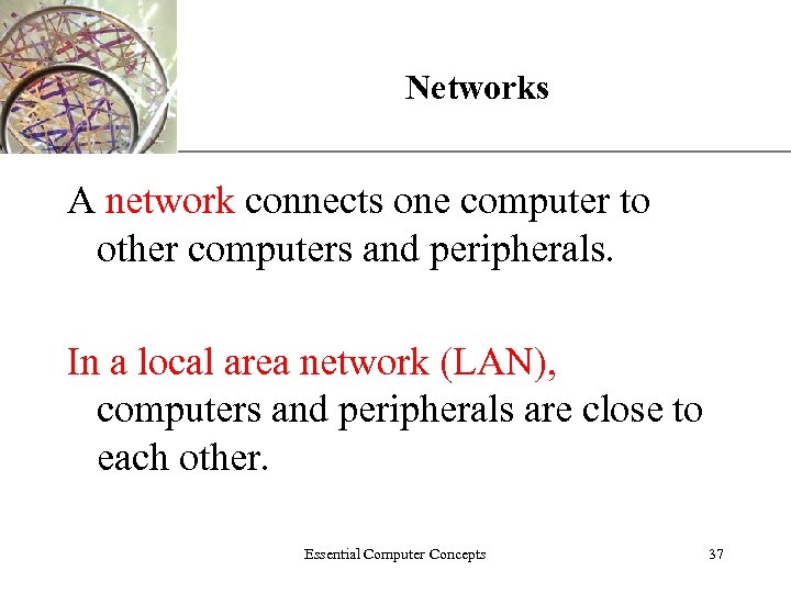 Networks XP A network connects one computer to other computers and peripherals. In a