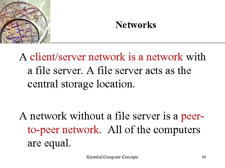 XP Networks A client/server network is a network with a file server. A file