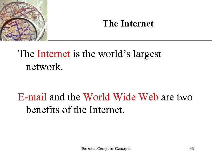 XP The Internet is the world's largest network. E-mail and the World Wide Web