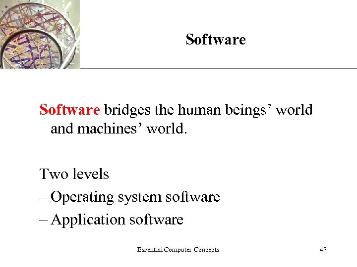 Software XP Software bridges the human beings' world and machines' world. Two levels –