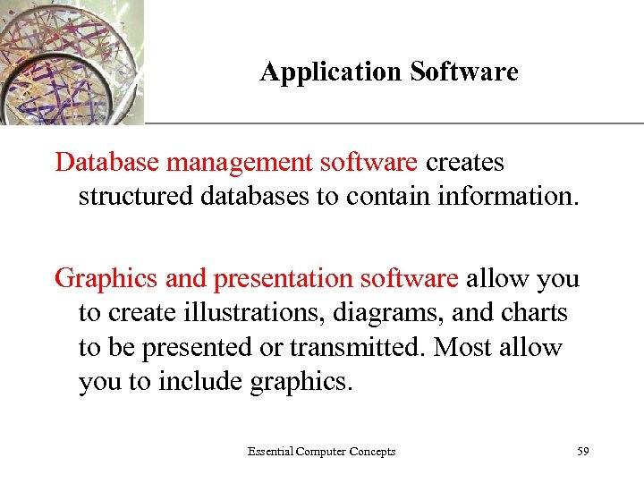 XP Application Software Database management software creates structured databases to contain information. Graphics and