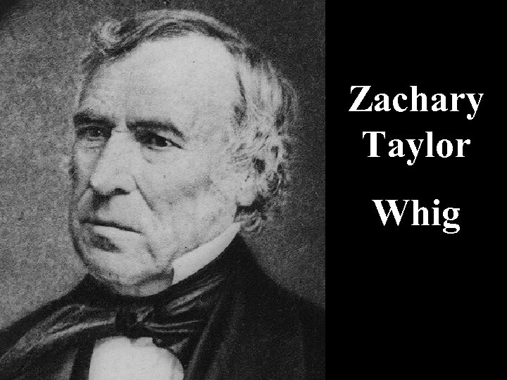 Zachary Taylor Whig