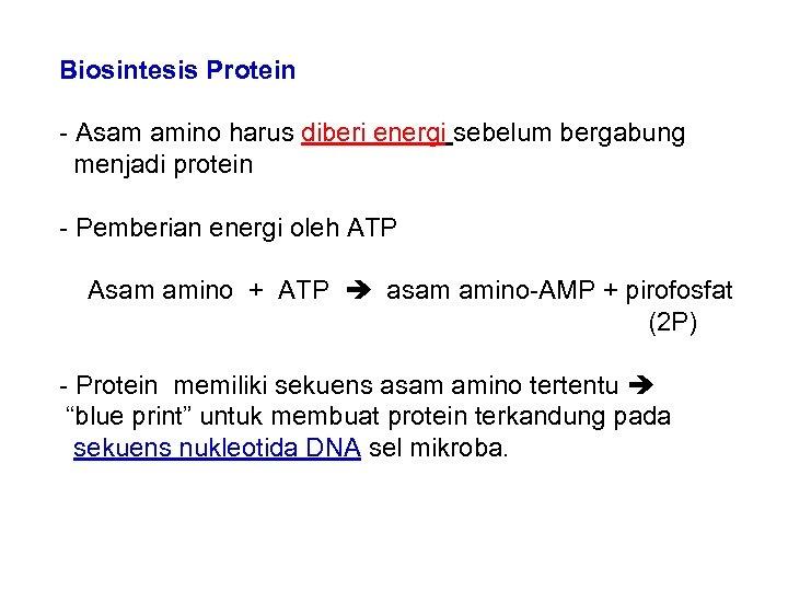 Biosintesis Protein - Asam amino harus diberi energi sebelum bergabung menjadi protein - Pemberian