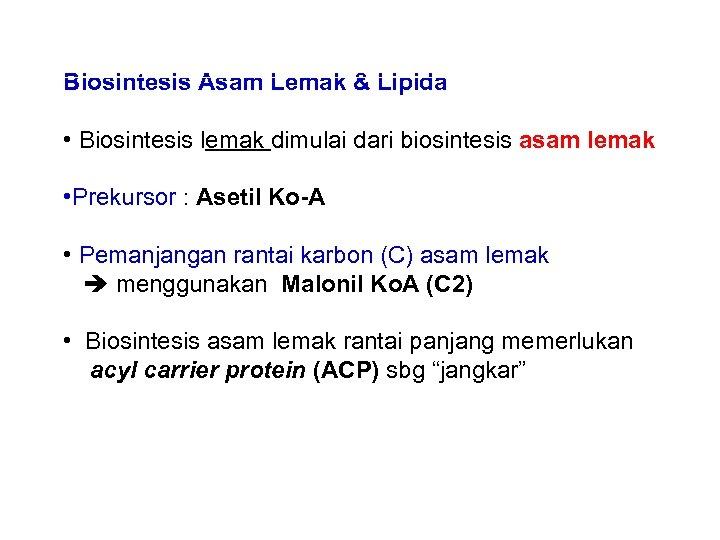 Biosintesis Asam Lemak & Lipida • Biosintesis lemak dimulai dari biosintesis asam lemak •
