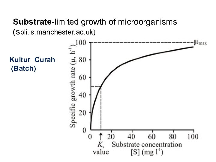 Substrate-limited growth of microorganisms (sbli. ls. manchester. ac. uk) Kultur Curah (Batch)