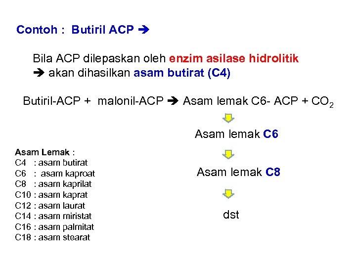 Contoh : Butiril ACP Bila ACP dilepaskan oleh enzim asilase hidrolitik akan dihasilkan asam