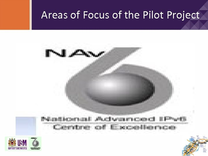 Areas of Focus of the Pilot Project