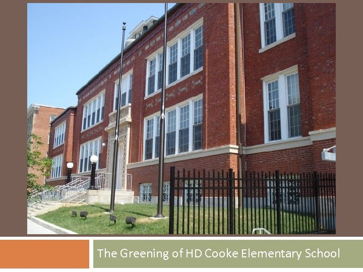 The Greening of HD Cooke Elementary School