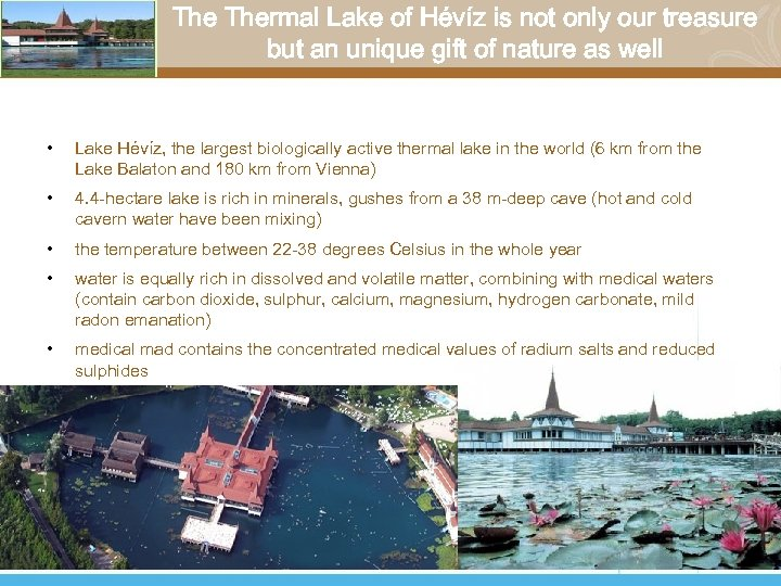 The Thermal Lake of Hévíz is not only our treasure but an unique gift