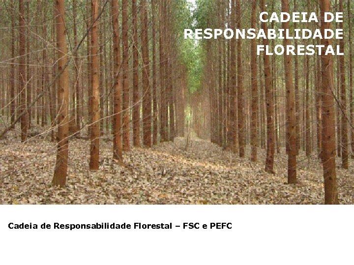 CADEIA DE RESPONSABILIDADE FLORESTAL Cadeia de Responsabilidade Florestal – FSC e PEFC