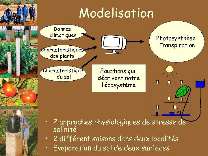 Modelisation Donnes climatiques Photosynthèse Transpiration Characteristiques des plants Characteristique du sol Equations qui décrivent