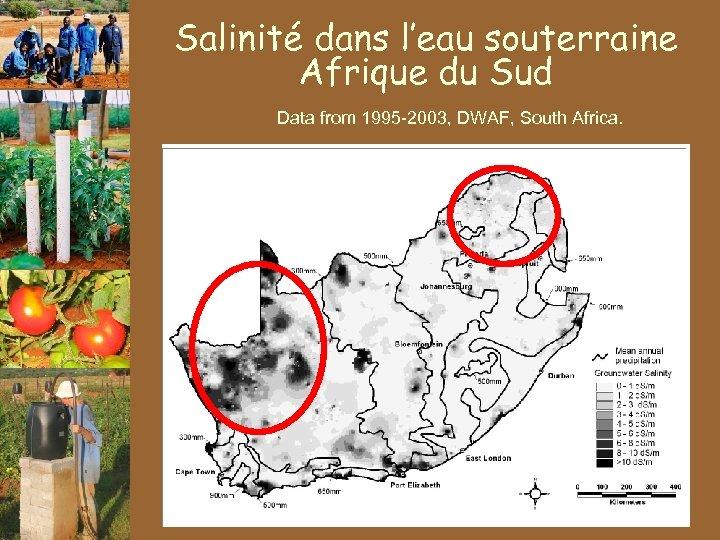 Salinité dans l'eau souterraine Afrique du Sud Data from 1995 -2003, DWAF, South Africa.