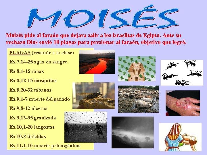 Moisés pide al faraón que dejara salir a los israelitas de Egipto. Ante su