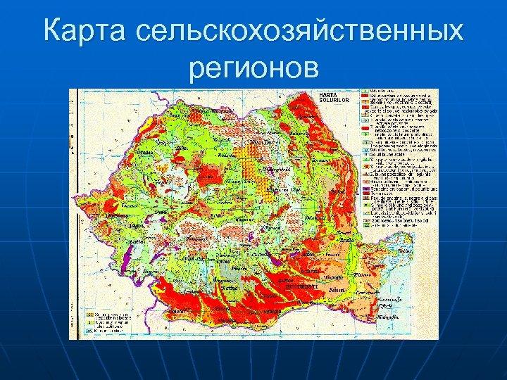 Карта сельскохозяйственных регионов