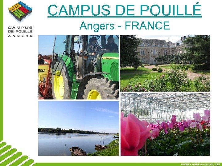CAMPUS DE POUILLÉ Angers - FRANCE