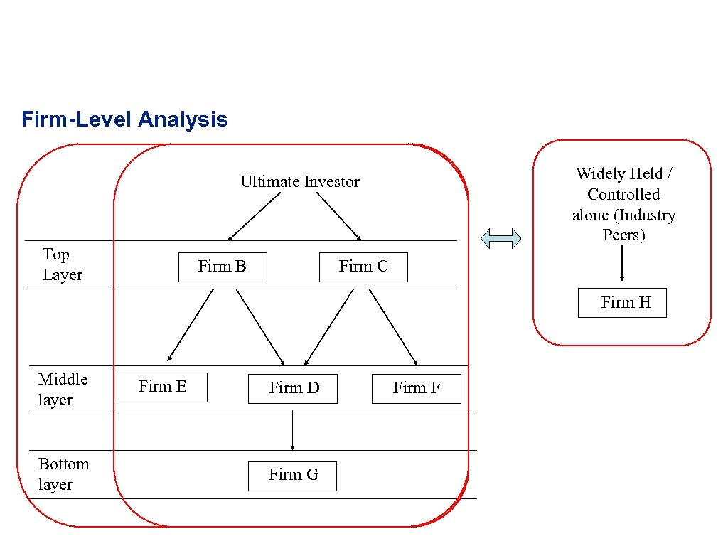 Firm-Level Analysis Widely Held / Controlled alone (Industry Peers) Ultimate Investor Top Layer Firm