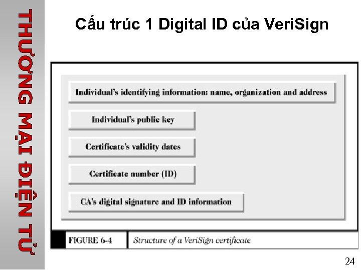 Cấu trúc 1 Digital ID của Veri. Sign 24
