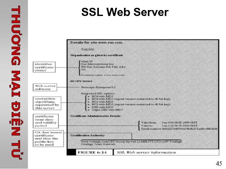 SSL Web Server 45