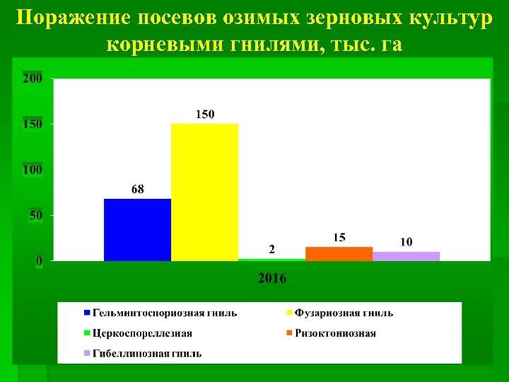 Поражение посевов озимых зерновых культур корневыми гнилями, тыс. га