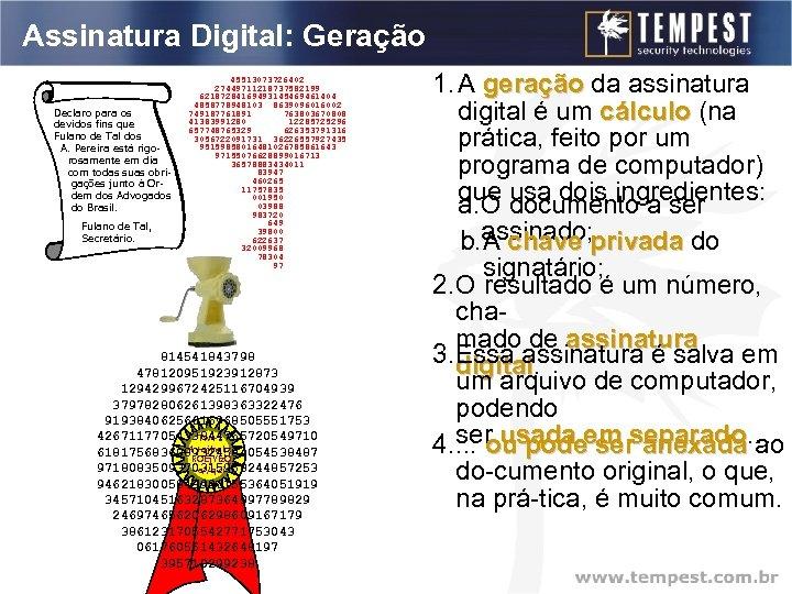Assinatura Digital: Geração Declaro para os devidos fins que a Empresa Tal Ind. Fulano