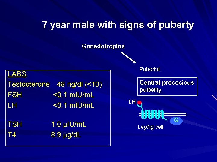 7 year male with signs of puberty Gonadotropins LABS: Testosterone 48 ng/dl (<10) FSH