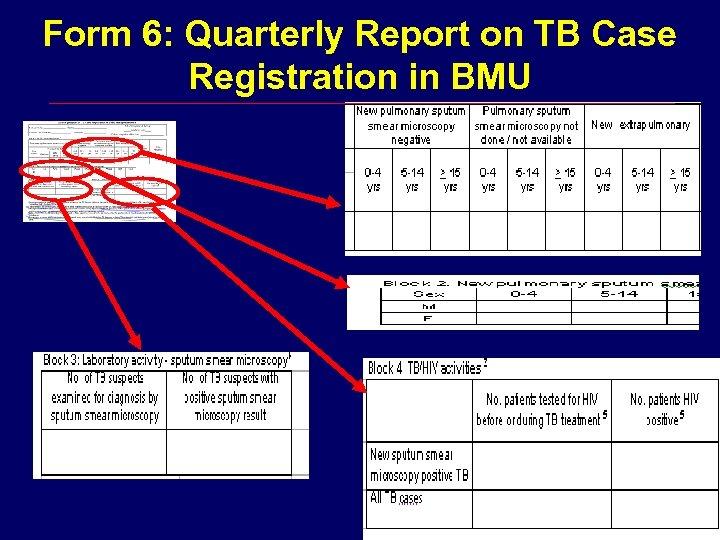 Form 6: Quarterly Report on TB Case Registration in BMU