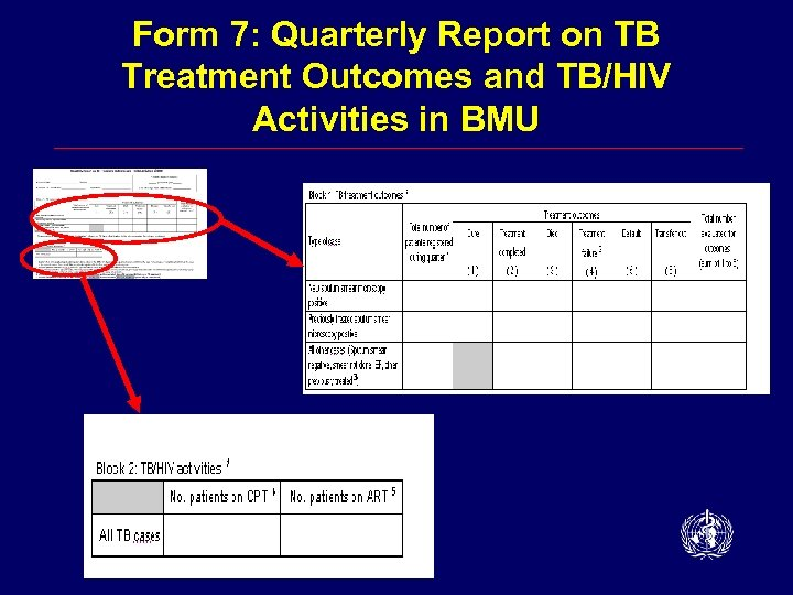 Form 7: Quarterly Report on TB Treatment Outcomes and TB/HIV Activities in BMU