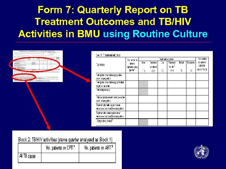 Form 7: Quarterly Report on TB Treatment Outcomes and TB/HIV Activities in BMU using