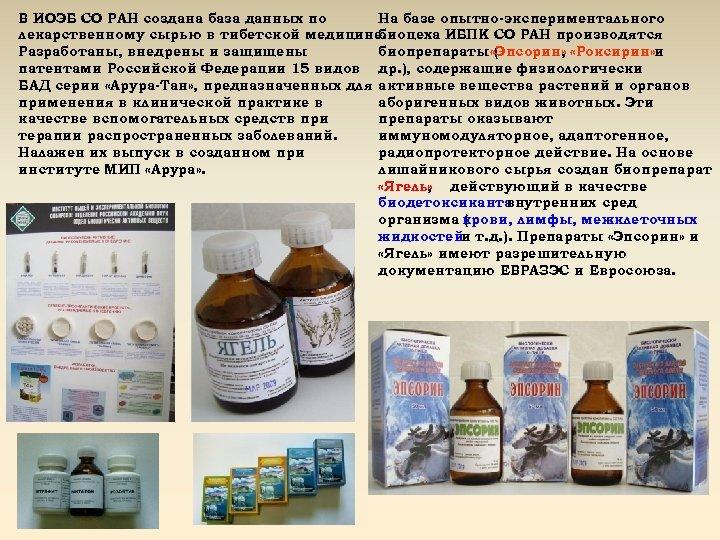 В ИОЭБ СО РАН создана база данных по На базе опытно-экспериментального лекарственному сырью в