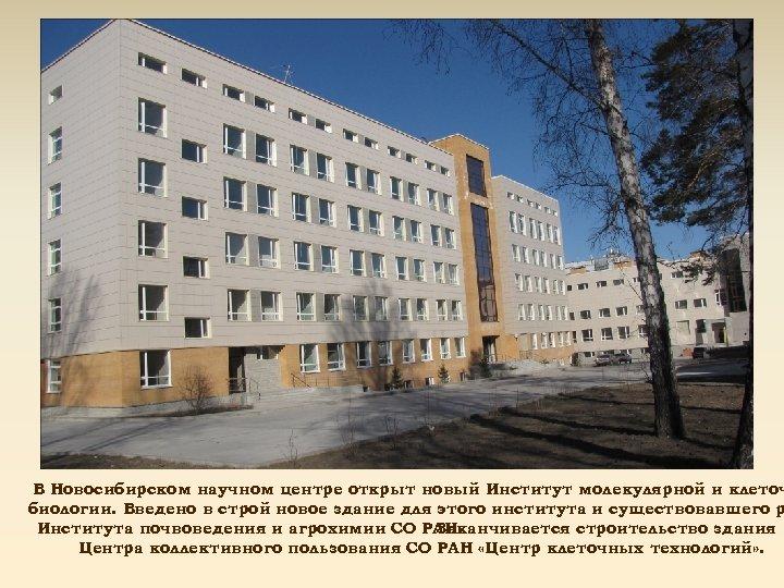 В Новосибирском научном центре открыт новый Институт молекулярной и клеточ биологии. Введено в строй