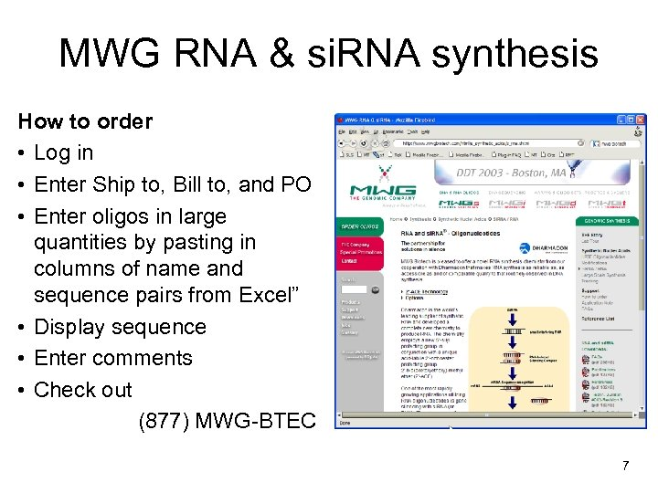 MWG RNA & si. RNA synthesis How to order • Log in • Enter