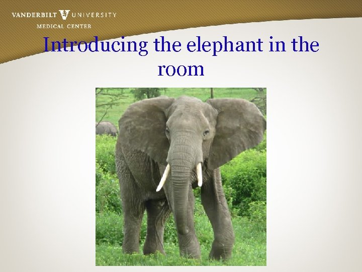 Introducing the elephant in the room