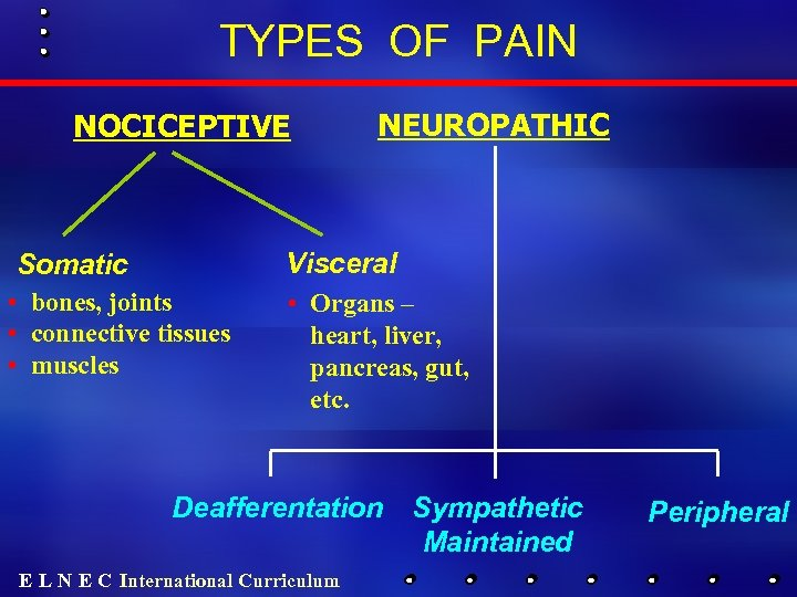 TYPES OF PAIN NOCICEPTIVE NEUROPATHIC Visceral Somatic • bones, joints • connective tissues •
