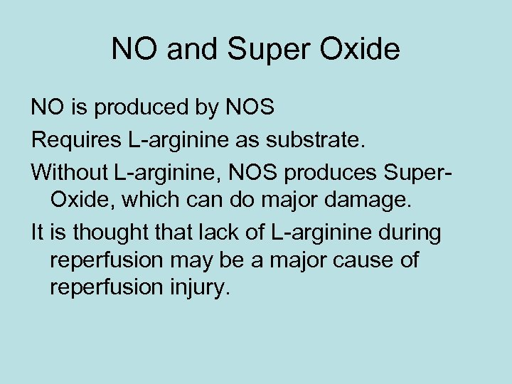 NO and Super Oxide NO is produced by NOS Requires L-arginine as substrate. Without