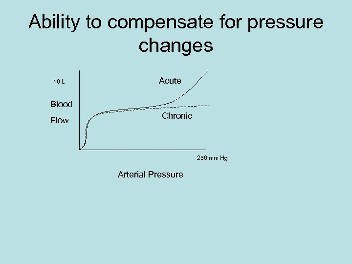 Ability to compensate for pressure changes 10 L Acute Blood Flow Chronic 250 mm