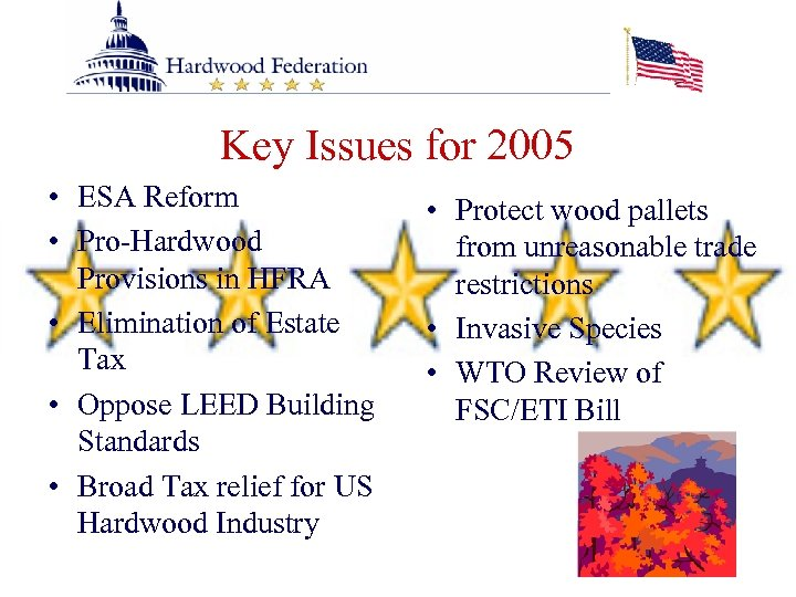 Key Issues for 2005 • ESA Reform • Pro-Hardwood Provisions in HFRA • Elimination