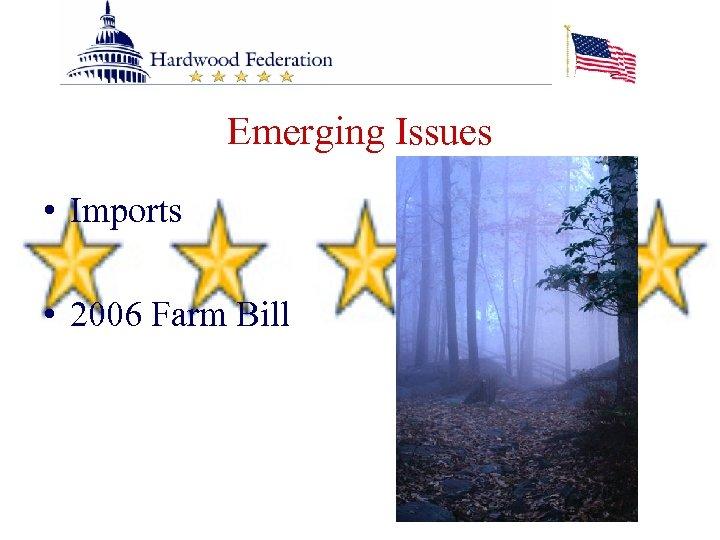 Emerging Issues • Imports • 2006 Farm Bill
