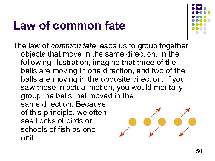 Law of common fate The law of common fate leads us to group together