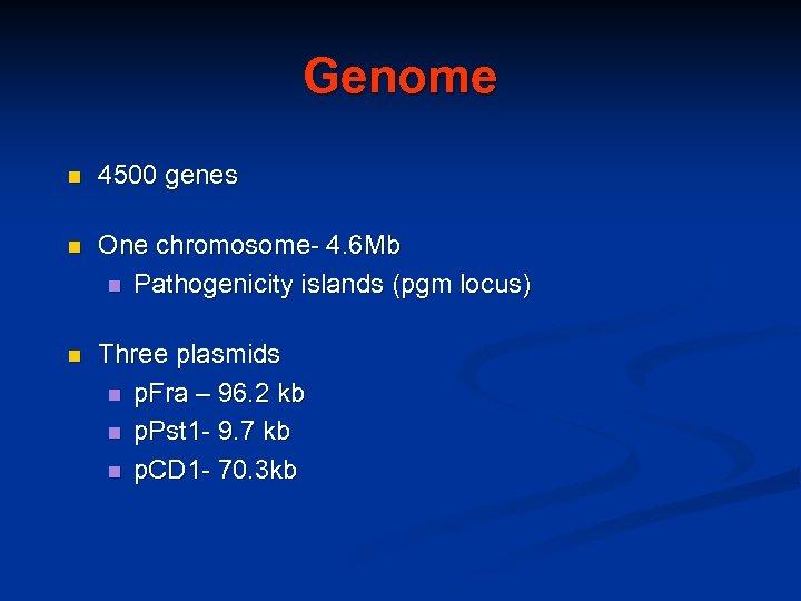 Genome n 4500 genes n One chromosome- 4. 6 Mb n Pathogenicity islands (pgm