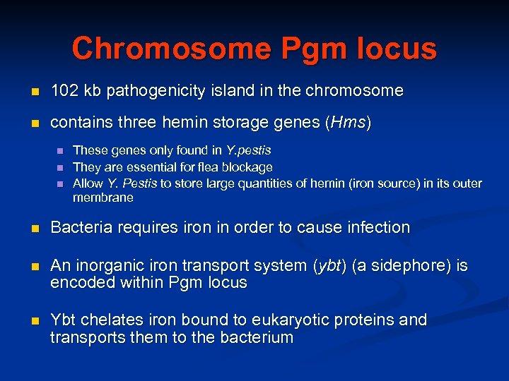 Chromosome Pgm locus n 102 kb pathogenicity island in the chromosome n contains three